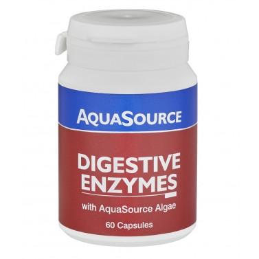Храносмилателни Ензими / Digestive Enzymes AquaSource - 60 Kапсули