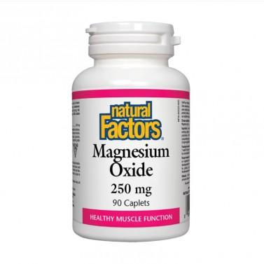 Магнезий оксид / Magnesium Oxide 250 mg Natural Factors - 90 каплети