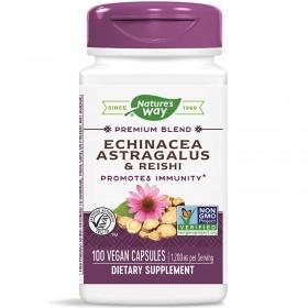 Echinacea Astragalus & Reishi / Ехинацея, Астрагал & Рейши Nature's Way - 100 Капсули